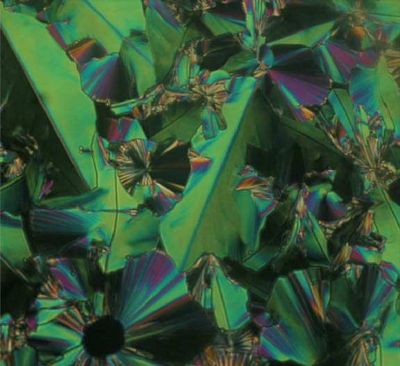 bent-core crystals in natural state