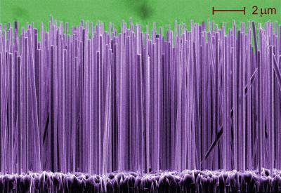 Growing Glowing Nanowires