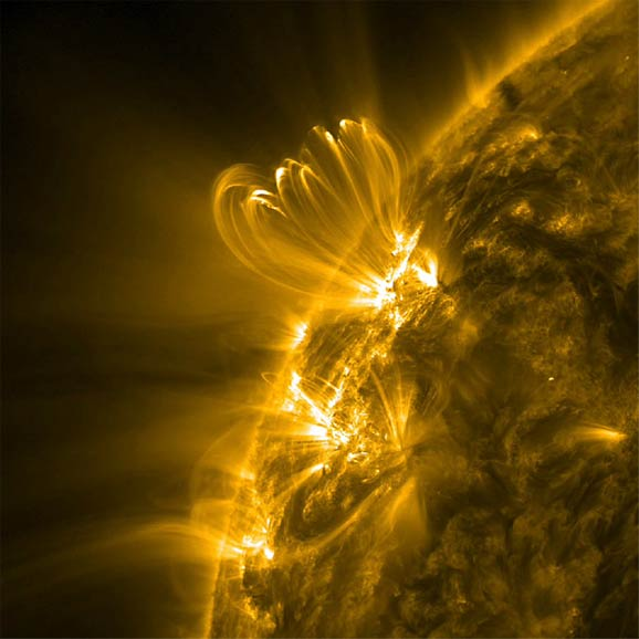 golden solar loops