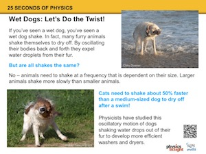 Wet Dogs: Let's Do the Twist!