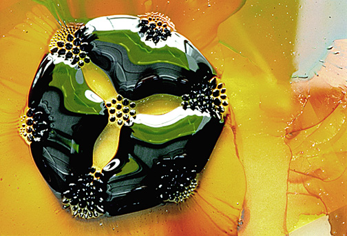 Ferrofluid on a glass surface, with 7 circular magnets. From On the Surface of Things, Images of the Extraordinary in Science by Felice Frankel and George M. Whitesides. (Image from web.mit.edu/feliceF/www/aps1.cfm).