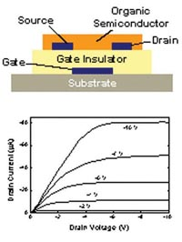Schematic of an organic thin film transistor