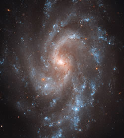 Hubble's View of NGC 5584